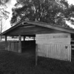 Vet Stall attached to Dairy Block